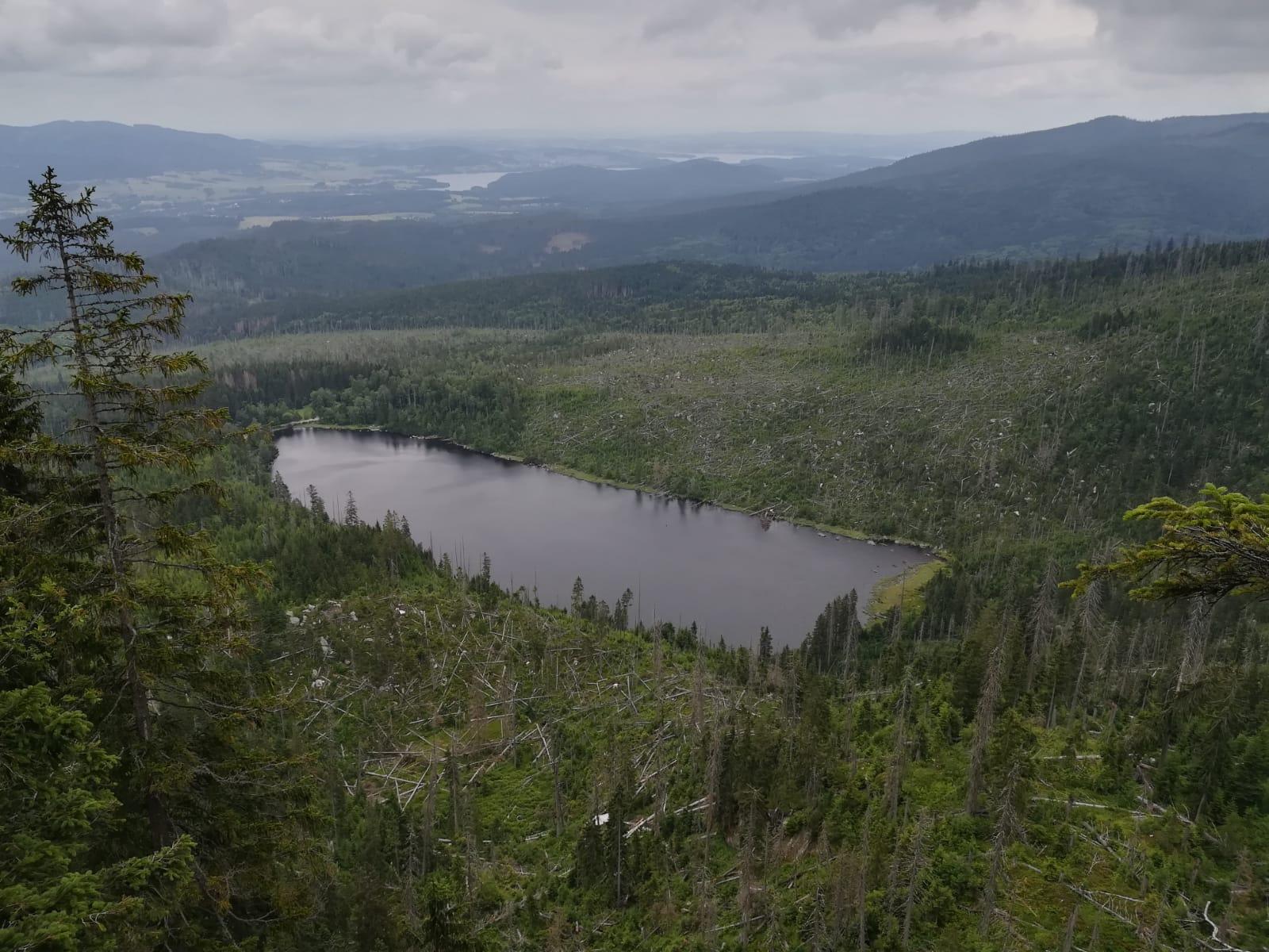 Wanderung – Plöckensteinsee