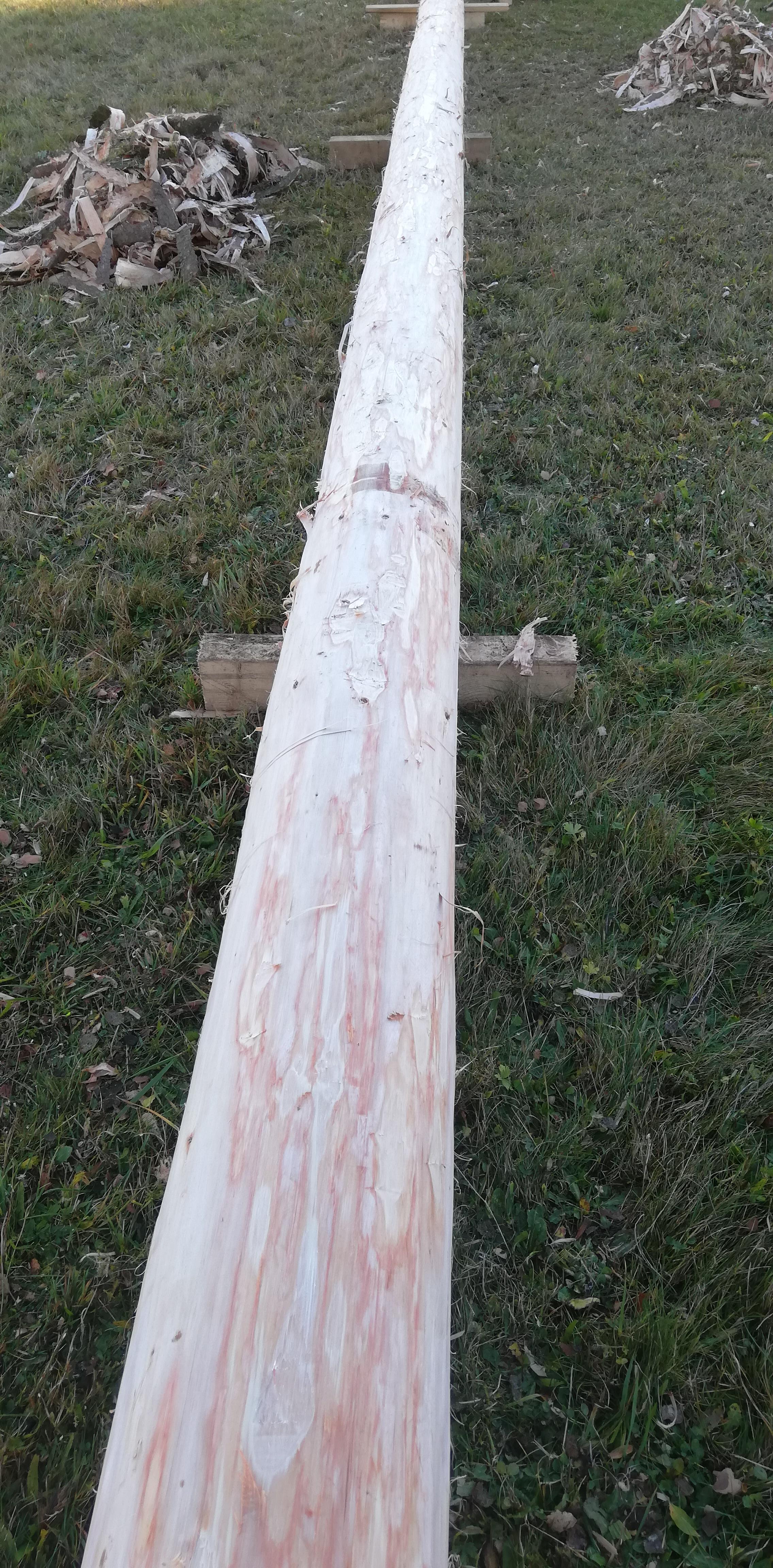 """Maibaum - """"Rindln"""" - Der Baum ist fertig!"""