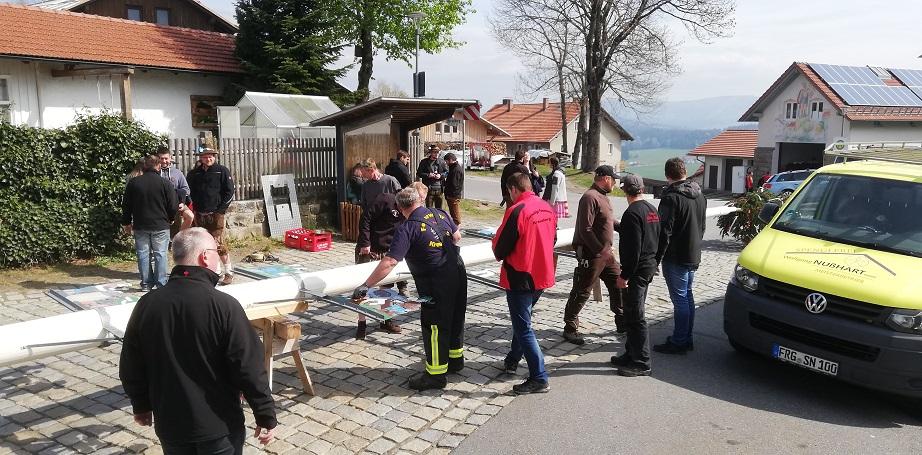 Maibaum 2019 - Die Vorbereitungen laufen