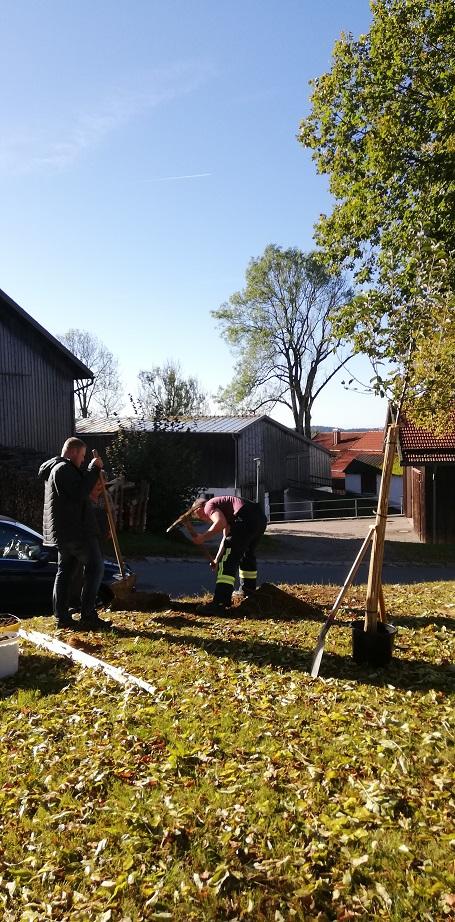 Ein Zeichen der Partnerschaft – Es wurde ein Platz für den Baum ausgewählt