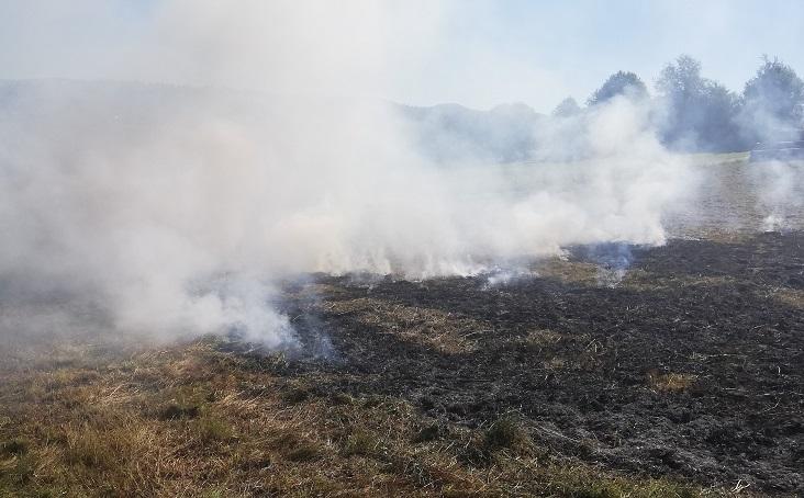 Einsatz – Brand im Freien – 31.07.2020