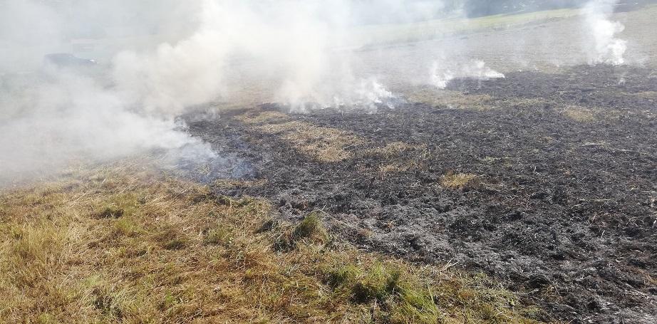 Einsatz - Brand im Freien - 31.07.2020